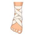 foot bandage ankle stretching bandaging isolated