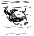 grey triggerfish vector image vector image