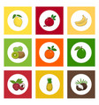 icons citrus tropical fruits on colored background vector image vector image