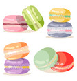 macaron set different taste and colour vector image vector image