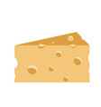 piece of cheese isolated on vector image