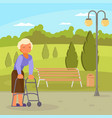 disabled senior woman with walking frame vector image vector image