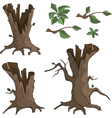 Set of dry trees cartoon vector image