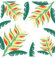 tropical flowers exotic foliage leaves vector image vector image