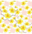 Delicate peony flowers vector image