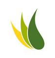 abstract nature sheath symbol logo design vector image vector image