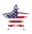 American flag star icon with outline vector image vector image