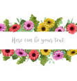 beautiful floral banner frame with multi-colored vector image vector image