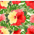 seamless texture bouquet with yellow pink hibiscus vector image
