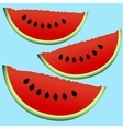 slice of watermelon vector image vector image
