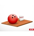 Symbol of a bowling game and field vector image vector image