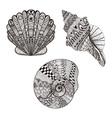 Zentangle stylized set seashells Hand Drawn vector image vector image