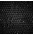 Black dragon skin background realistic squama vector image