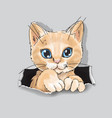cute cat in in ripped paper cartoon vector image vector image