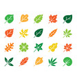 organic leaf color silhouette icons set vector image vector image