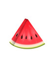 realistic slice of watermelon water melon vector image