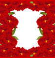 red peony flower border vector image vector image