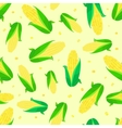 corn ears seamless pattern vector image