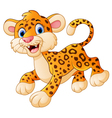 cute cartoon leopard vector image vector image