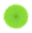 fluffy hair ball vector image vector image