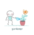 gardener waters the flowers in a pot vector image vector image