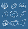 sea shell outline icons on blue vector image vector image