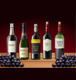 set of wine bottles and grapes vector image vector image
