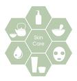 Skincare concept vector image