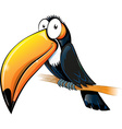 fun toucan cartoon isolated on white vector image vector image