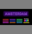 neon name of amsterdam city vector image
