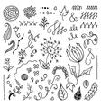 set hand drawn floral doodle elements vector image vector image