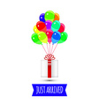 balloons party multicolored giftbox with balloons vector image vector image