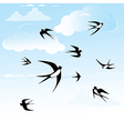 Bird swallow in sky vector | Price: 1 Credit (USD $1)