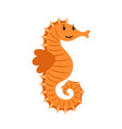 sea horse marine animal vector image vector image