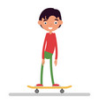 the boy on skateboard flat vector image