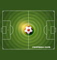 soccer field with football top view vector image