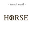 animal world horse text background image vector image vector image