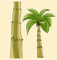 cartoon banana palm tree without fruit and the vector image vector image