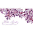 hello spring background with purple lilac flowers vector image vector image