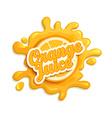 Orange juice label splash vector image vector image