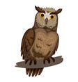 owl icon cartoon style vector image