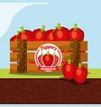 peppers vegetable always fresh in wood basket vector image vector image