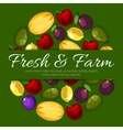 Poster with fresh farm fruits and text vector image vector image