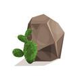 rock stone and cactus landscape design element vector image vector image