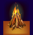 realistic burning bonfire with wood vector image