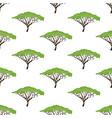 acacia tree seamless pattern vector image vector image
