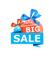 big christmas sale isolated sticker vector image vector image