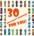 Big set of 30 high quality skateboards and vector image vector image