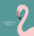 Flamingo design vector image