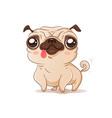 pug in kawaii style vector image